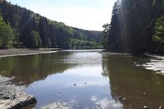 Teich (2)